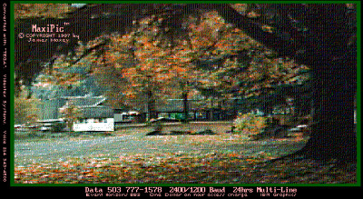 Autumn Leaves MaxiPic Jim Maxey Retro GIF - circa 1988
